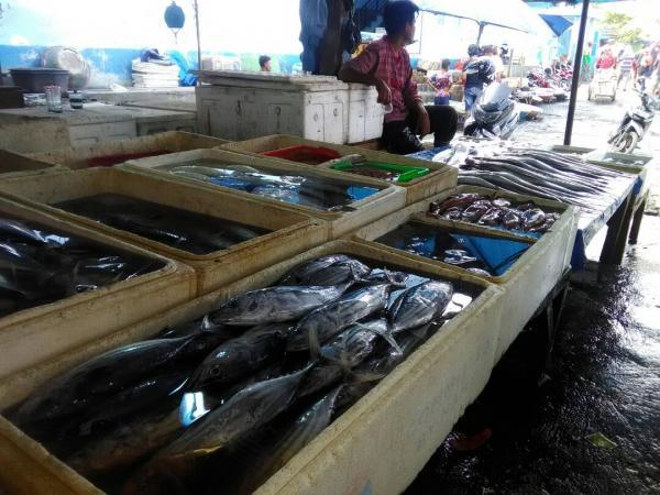 Harga Ikan di TPI Palabuhanratu Mengalami Kenaikan