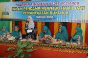 Kader Posyandu Harus Aktif Lakukan Pendampingan Ibu Hamil