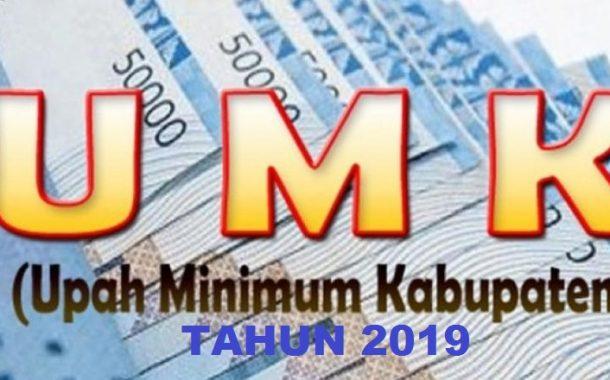 Gubernur Jabar Tetapkan UMK 2019 di 27 Kabupaten/Kota, Karawang Paling Besar