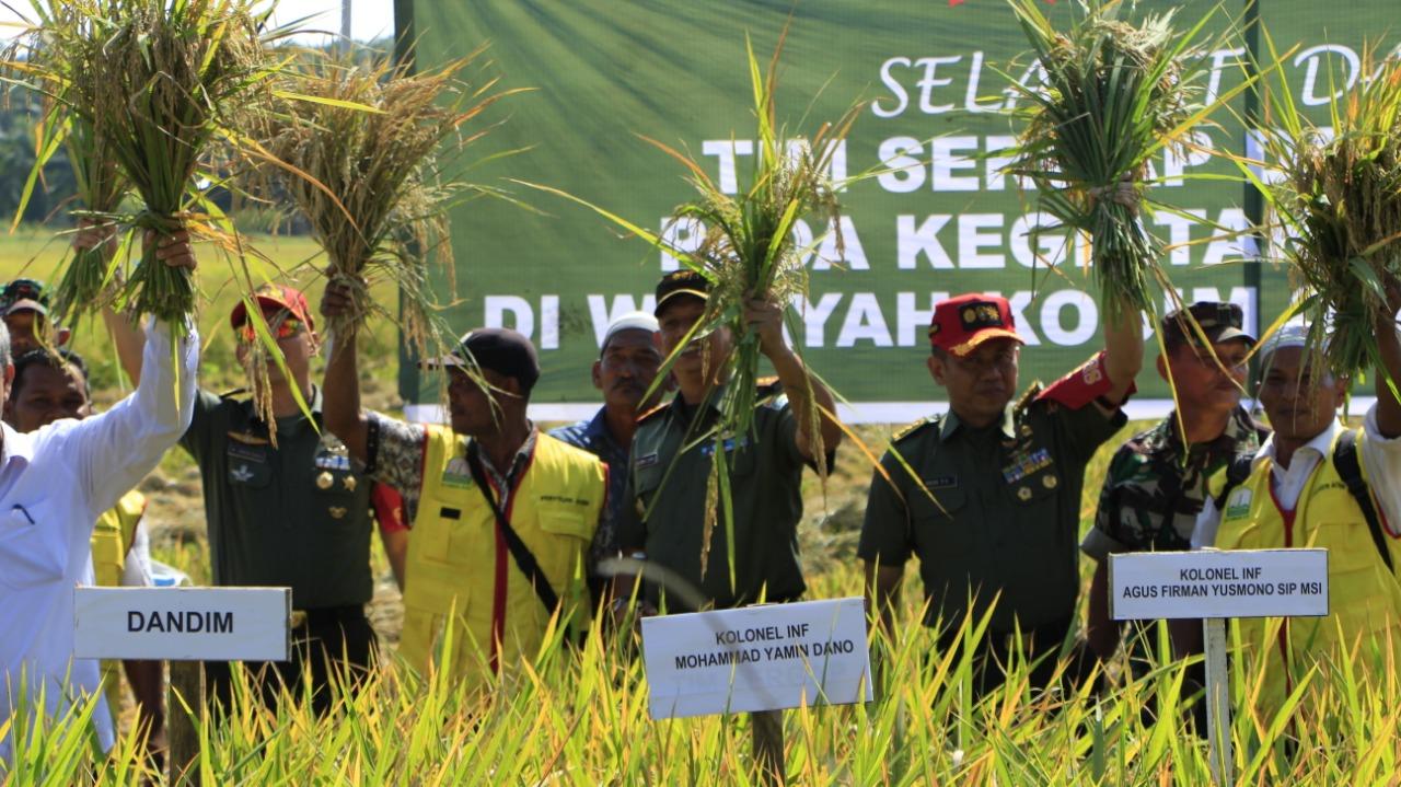 Kodim 0104 Aceh Timur Panen Padi Perdana Bersama Tim Sergap Sterad