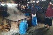Ratusan Petani Garam Dapur di Bireuen Butuh Bantuan Modal
