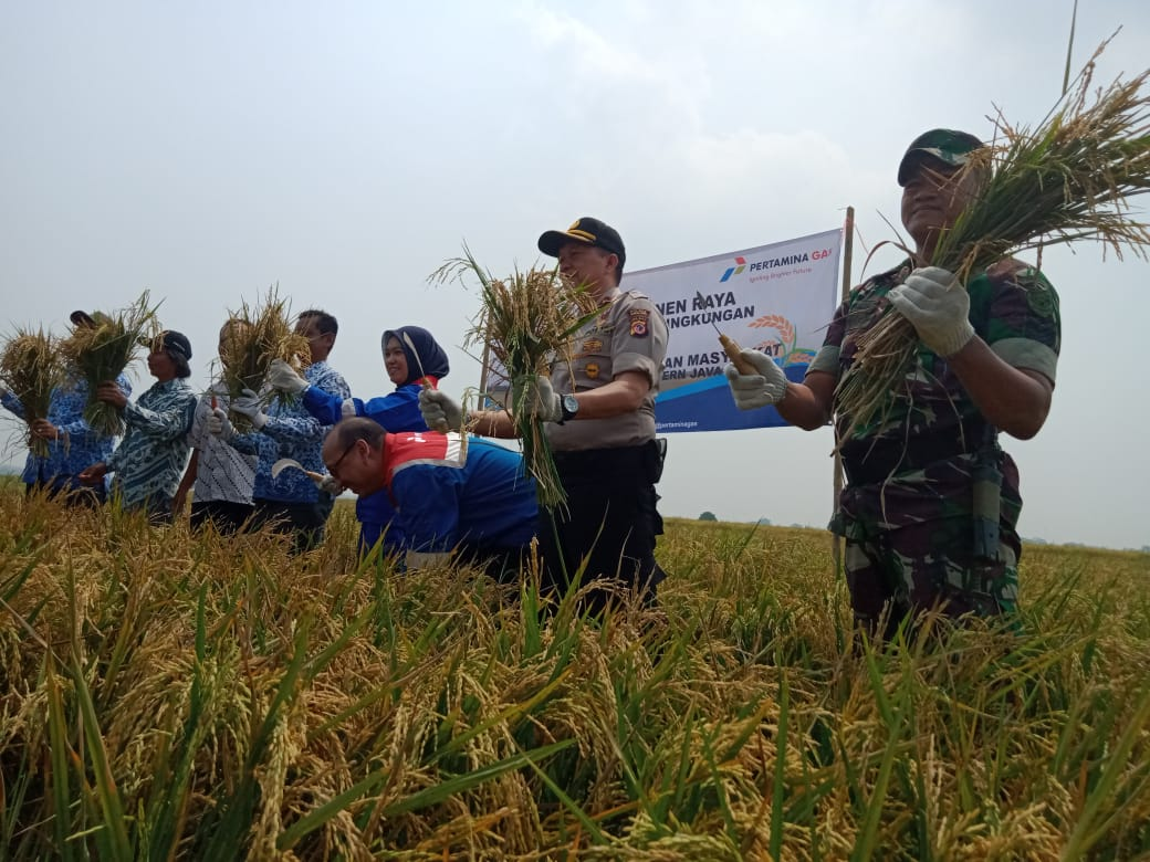 Pertagas WJA Berhasil Kembangkan Pertanian Ramah Lingkungan di Karawang