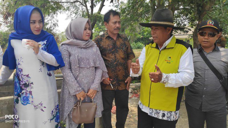 630 Hektar Sawah di Kecamatan Cibuaya Kekeringan