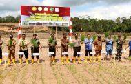 Kodim 0104 Aceh Timur Tanam Padi Perdana di Sawah yang Baru Dicetak