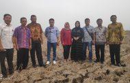 DPRD Karawang Sebut 600 Hektar Sawah di Kecamatan Banyusari Kekeringan