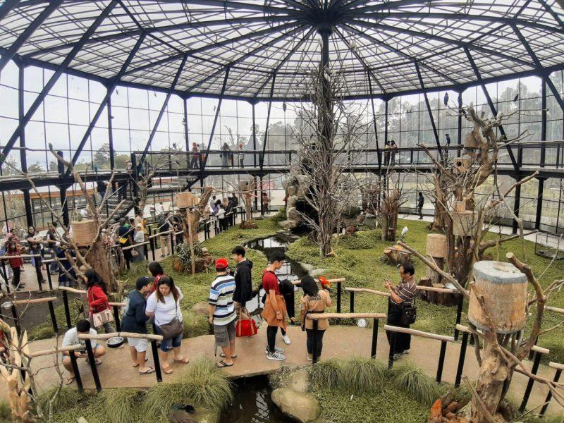 Lembang Park and Zoo Dipadati Pengunjung Libur Natal dan Tahun Baru