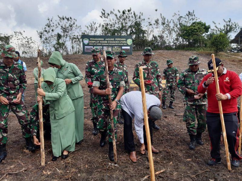 Sukseskan Swasembada Pangan, Kodim 0103 Aceh Utara Tanam Jagung
