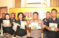 Polsek Bekasi Timur Ringkus Dua Pria karena Menanam Ganja Dalam Pot di Kamar Kost