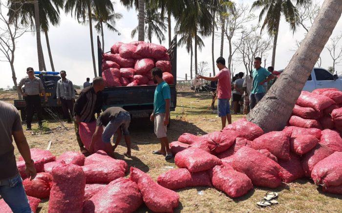 Bea Cukai Lhokseumawe Gagalkan Penyelundupan 50 Ton Bawang Merah di Aceh Utara