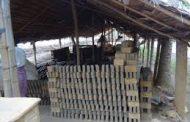 Desa Ulee Pulo Tanpa Pengangguran karena Industri Batu Bata Berkembang