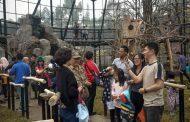 Asyikk....! Taman Rekreasi Lembang Park and Zoo Sudah Dibuka Kembali