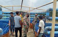 PembuatanBioflog dan Hidroponik Kodim 0103 Aceh Utara Nyaris Rampung