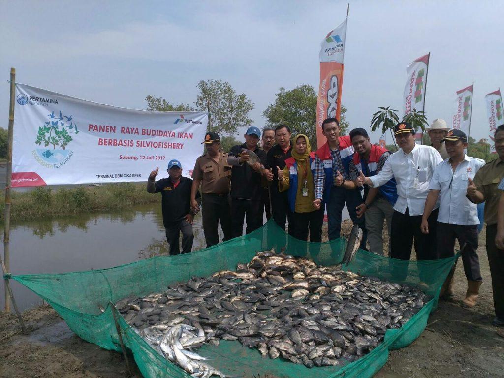 Ekowisata Blanakan Binaan Pertamina Kembali Panen Ikan Spirit News