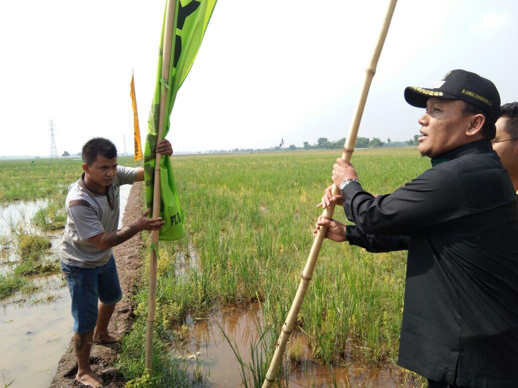 Wakil Bupati Karawang Sidak Dua Lokasi Pembangunan Perumahan
