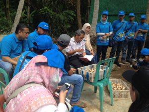Perwakilan dari KLHK, Prof.Sudharto yang juga sebagai anggota Dewan Proper yang sedang melihat hasil panen jamur merang produksi petani Cyber