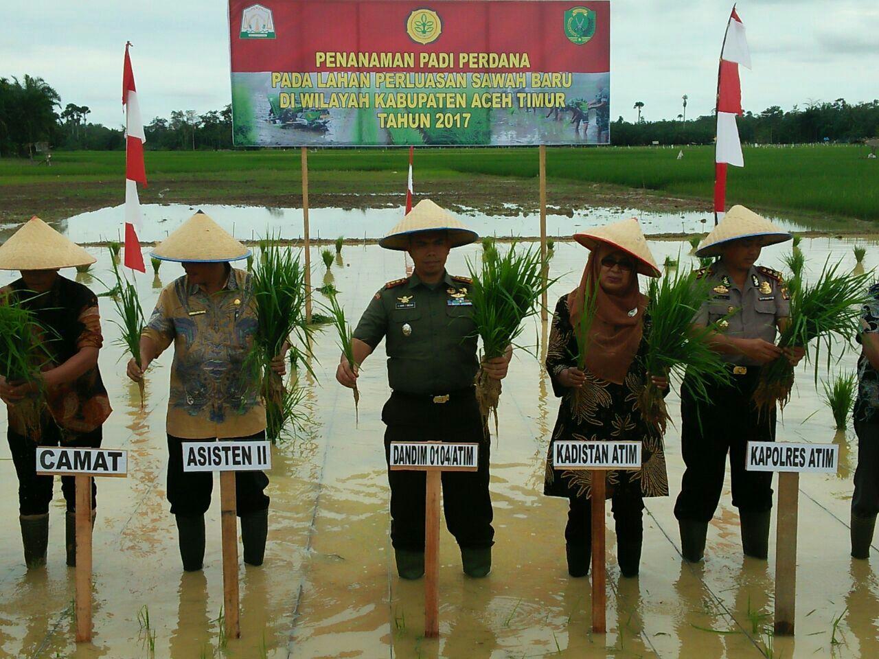 Dandim 0104/Atim Tanam Perdana di Aceh Timur
