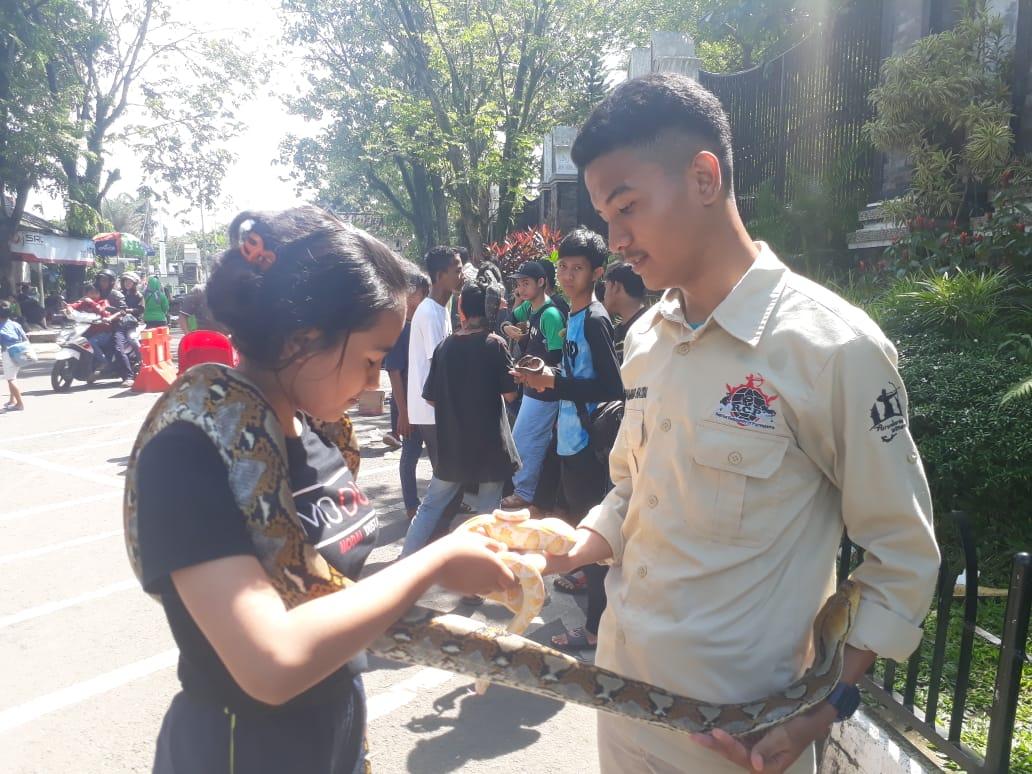 Reptil Community Edukasi Masyarakat Tentang Hewan Reptil