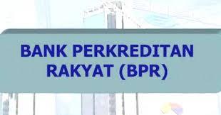 Gedung Belum Punya, Status PD BPR Subang Jadi PT Sudah Disahkan?