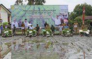 Nova Klaim Aceh Surplus Gabah 1,3 Ton Tiap Tahun