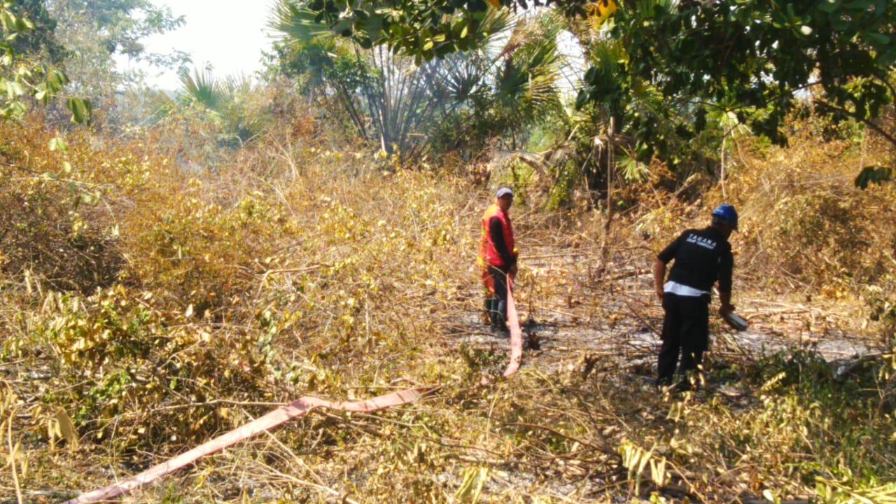 Dampak Kemarau Berkepanjangan Bireuen Rawan Kebakaran Hutan dan Rumah