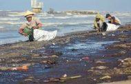 PHE ONWJ Sigap Bersihkan Sisa Tumpahan Minyak Mentah di Pesisir Karawang