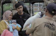 Irfan Hakim dan Panji Petualang Syuting Video Keratif di Lembang Park and Zoo