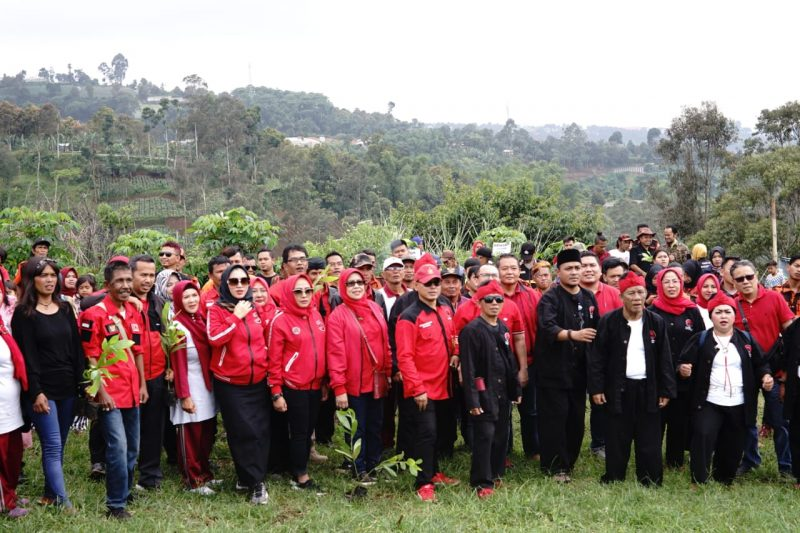 PDIP Gencarkan Gerakan Penanaman Pohon