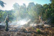 TNI-POLRI Berjibaku Padamkan Karhutla di Rantau Peureulak