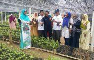Disbudpar Aceh Berkolaborasi dengan Unsyiah Bangun Desa Wisata Nilam