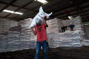 PT Pupuk Kujang Pastikan Produksi dan Distribusi Pupuk Tetap Aman