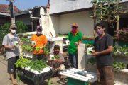 Warga Mekarjaya Membangun Kawasan Rumah Pangan Lestari